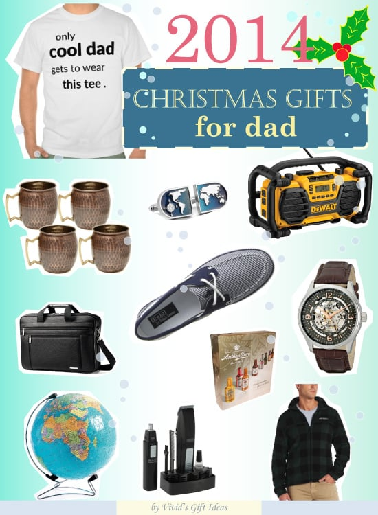what christmas present to get for dad vivid 39 s
